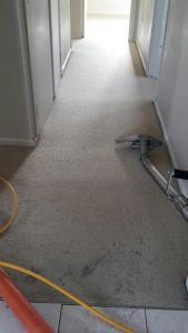 Before-Carpet-Clean-Hallway